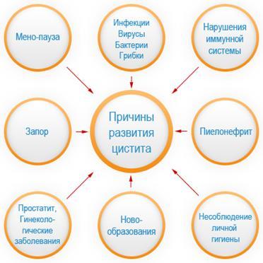 Схема лечения цестита