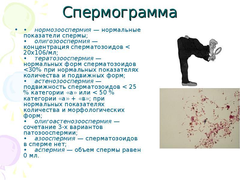 spermogramma-pravila-sdachi