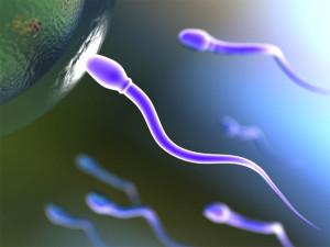 Астенозооспермия