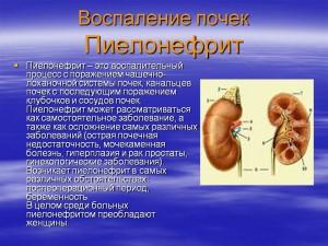 Пиелонефрит симптомы