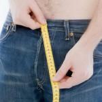 Средние и нормальные размеры полового члена